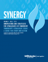 SYNERGY-Tomorrows-Synagogue-Today-Report