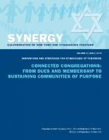 SYNERGY-Connected-Congregations-Report